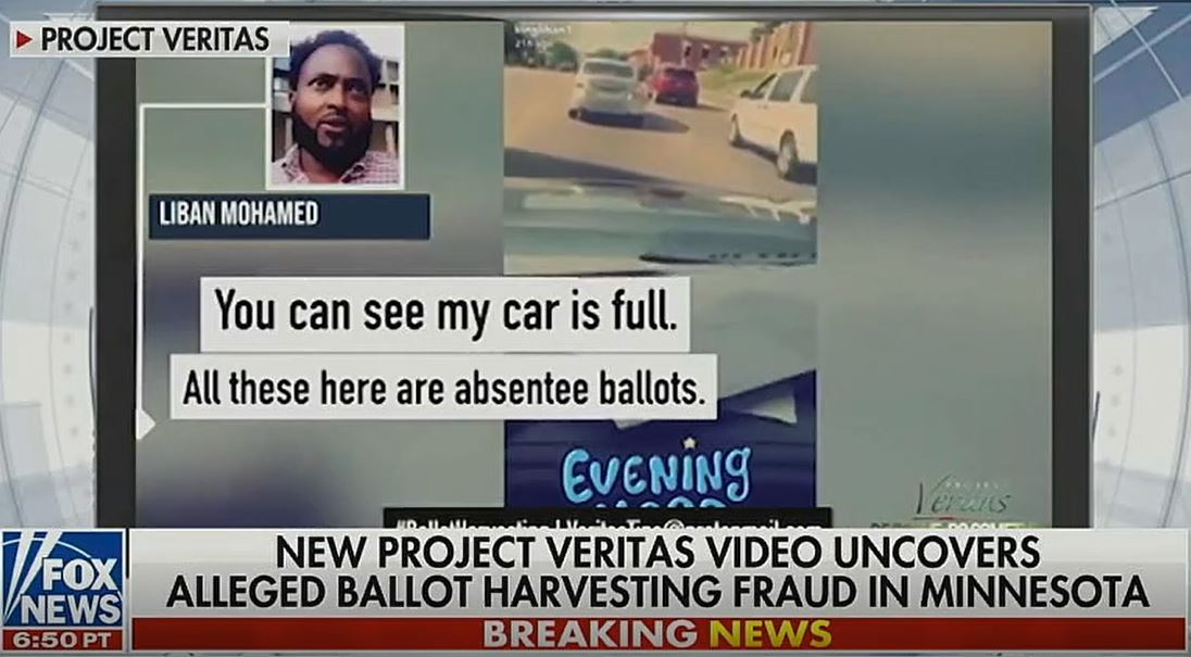 Ballot Harvesting Scheme Revealed by Project Veritas Video