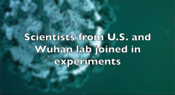 Why Were U.S. Tax Dollars Used to Fund Research at the Wuhan Lab in China?